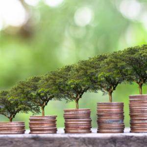 Environment and economy