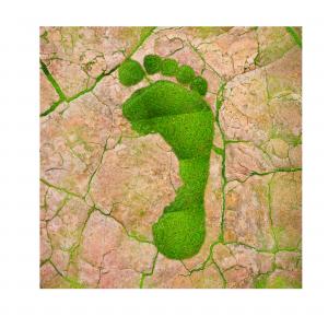 Green footprint on clay-baked earth