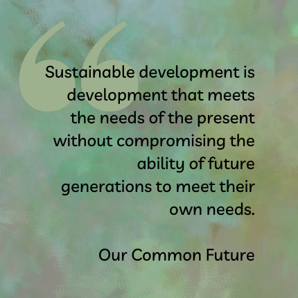 Quote from Our Common Future