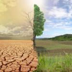 Climate crisis as photo